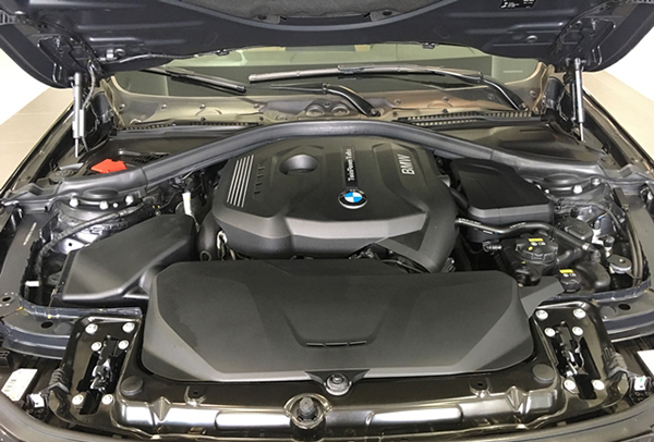 dong-co-xe-bmw-320i-2017-2018(1)
